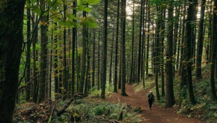 Podróżuj wiosną – najpiękniejsze pasma na południu Polski