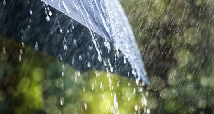 Pogorszenie pogody – wiatr i opady deszczu, ochłodzenie